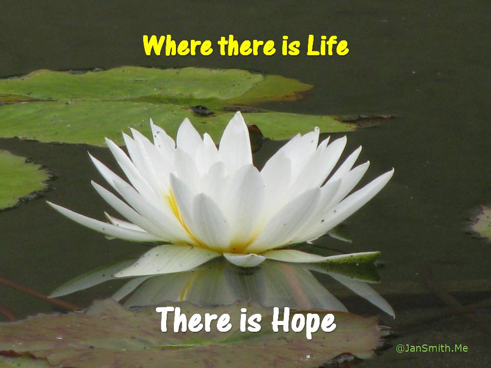 Life then Hope