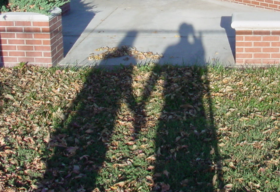 Has your relationship become just a shadow in your life?